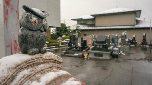 2019初雪